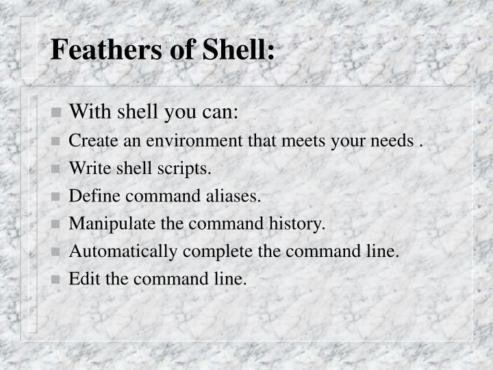 Feathers of Shell: