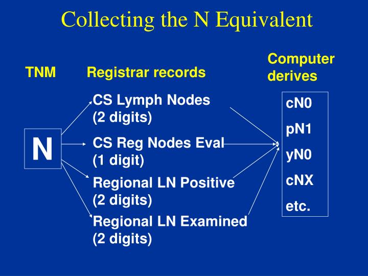 Collecting the N Equivalent