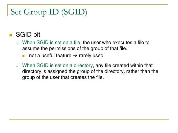 Set Group ID (SGID)