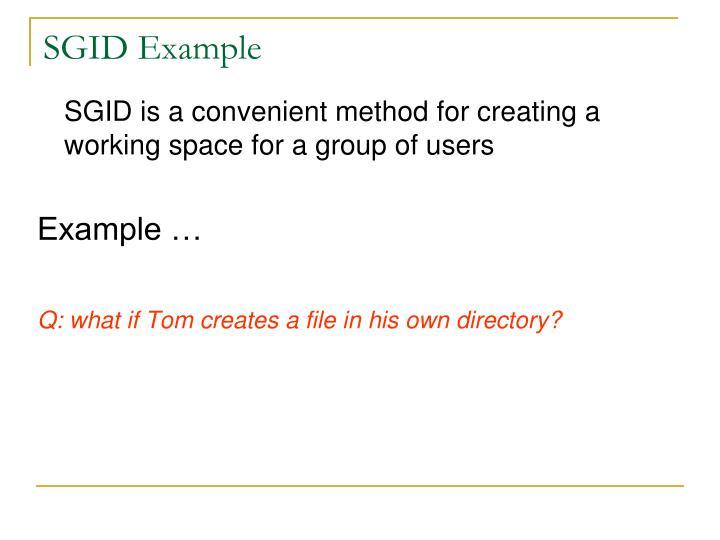 SGID Example