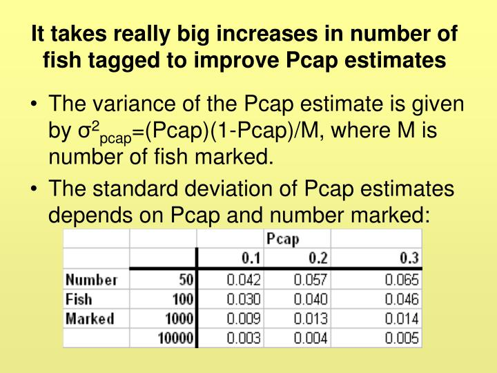 It takes really big increases in number of fish tagged to improve Pcap estimates