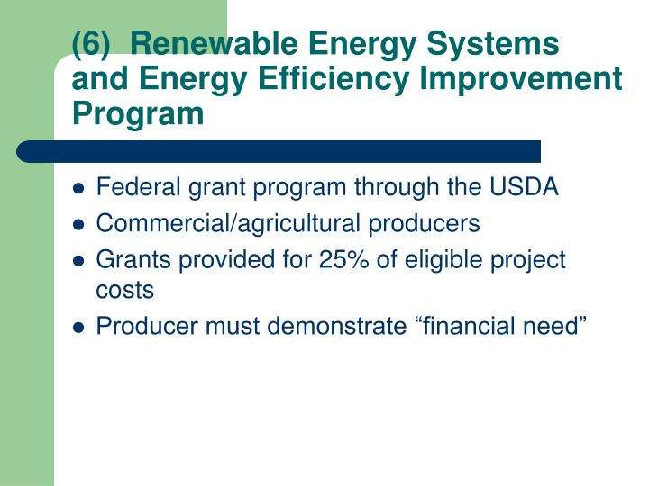 (6)  Renewable Energy Systems and Energy Efficiency Improvement Program