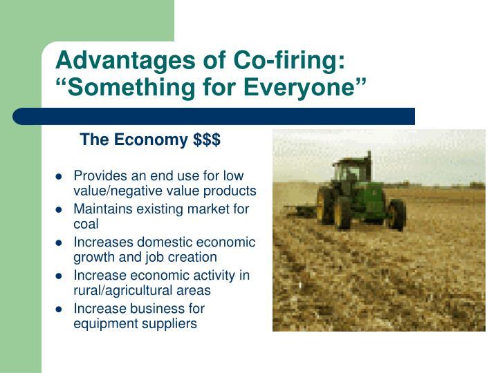 Advantages of Co-firing: