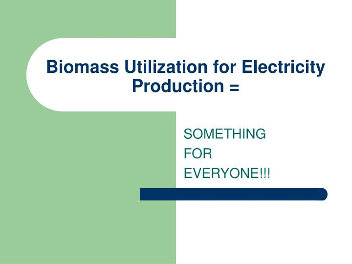 Biomass Utilization for Electricity Production =