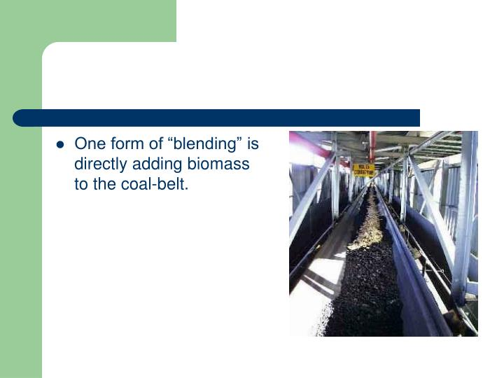 """One form of """"blending"""" is directly adding biomass to the coal-belt."""