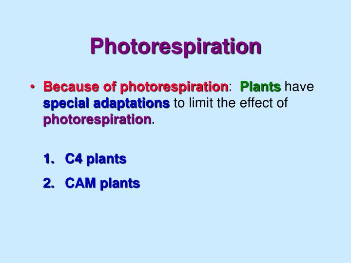 Photorespiration