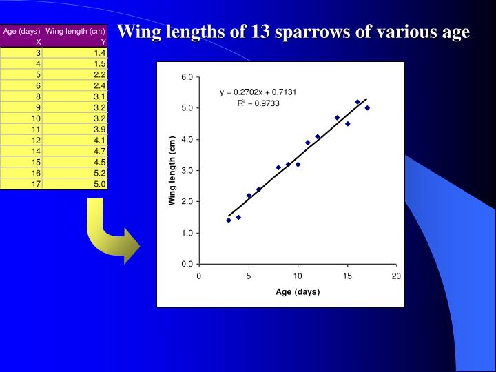 Wing lengths of 13 sparrows of various age