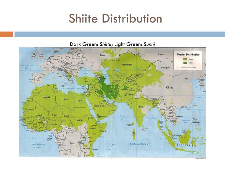 Shiite Distribution