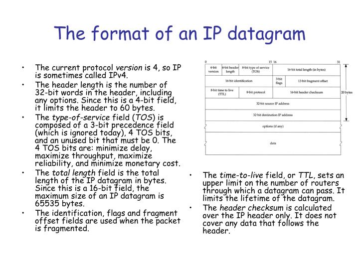 The format of an IP datagram