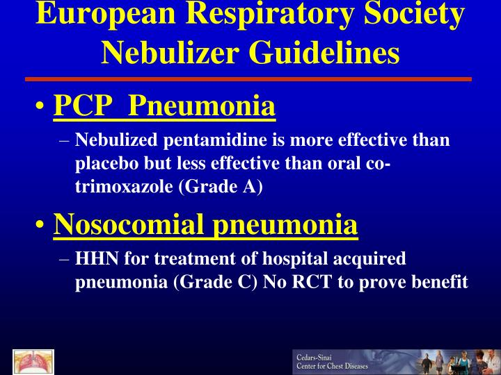 European Respiratory Society Nebulizer Guidelines