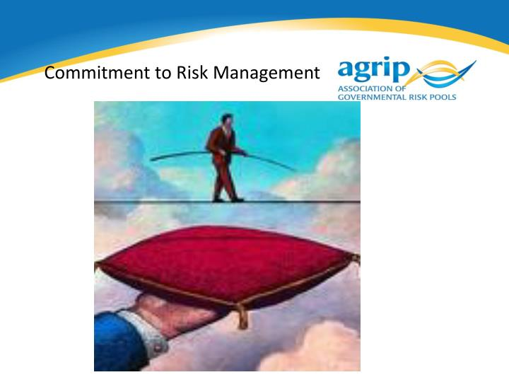 Commitment to Risk Management