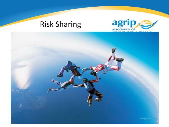 Risk Sharing