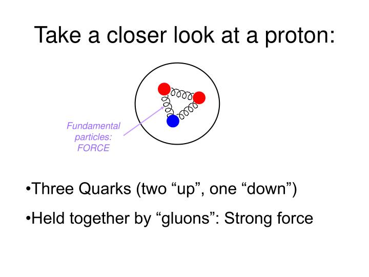 Fundamental particles: FORCE