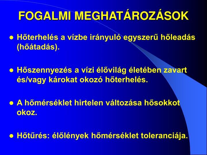 FOGALMI MEGHATÁROZÁSOK