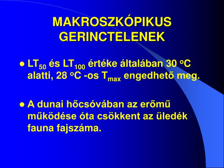 MAKROSZKÓPIKUS GERINCTELENEK