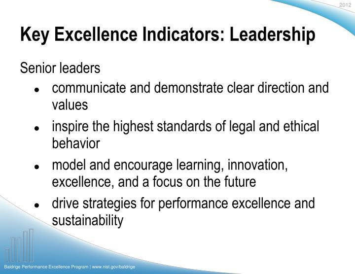 Key Excellence Indicators: Leadership