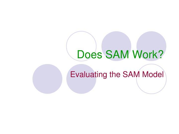 Does SAM Work?