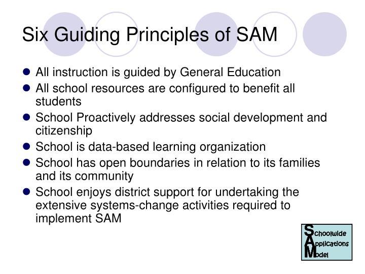 Six Guiding Principles of SAM