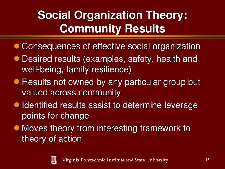 Consequences of effective social organization