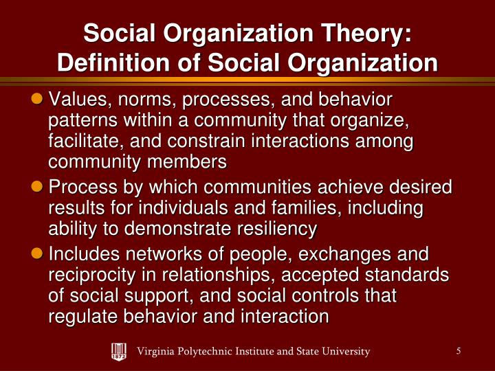Values, norms, processes, and behavior patterns within a community that organize, facilitate, and constrain interactions among community members