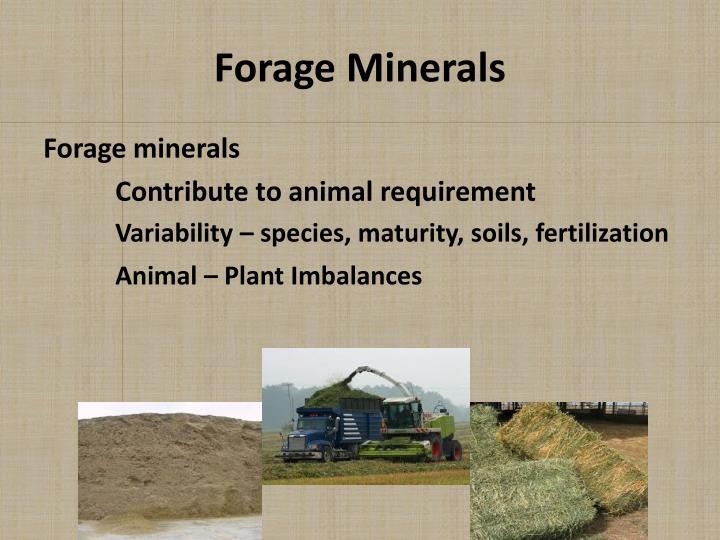 Forage Minerals