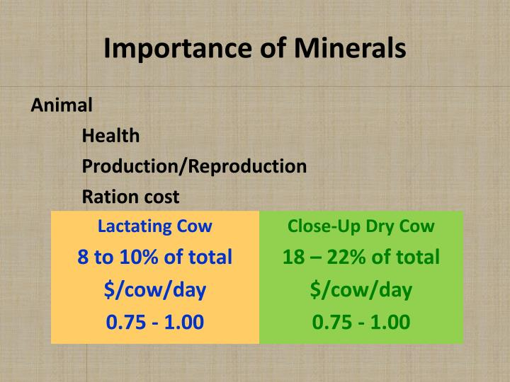 Importance of Minerals