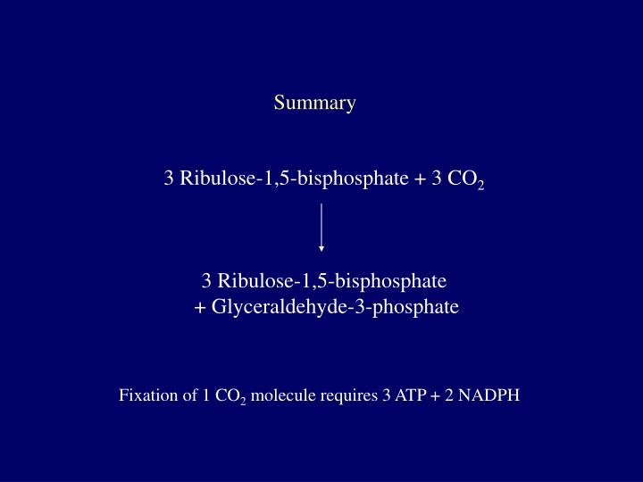 3 Ribulose-1,5-bisphosphate + 3 CO