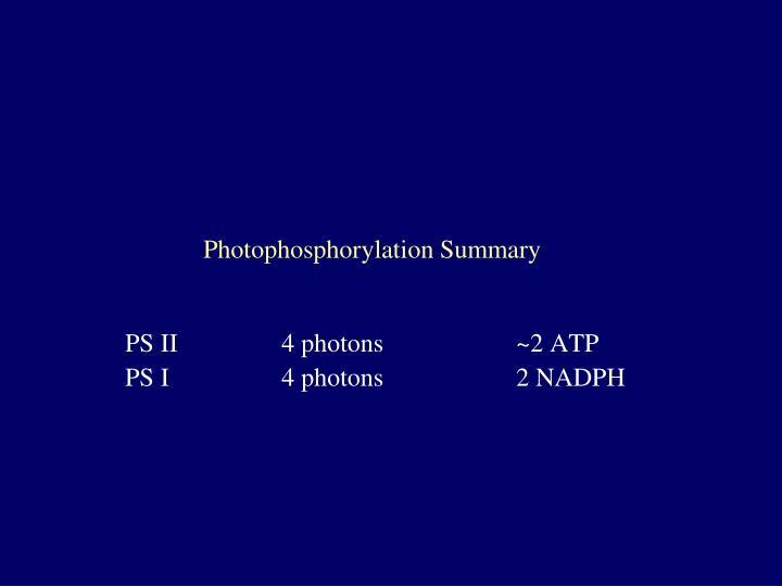 Photophosphorylation Summary