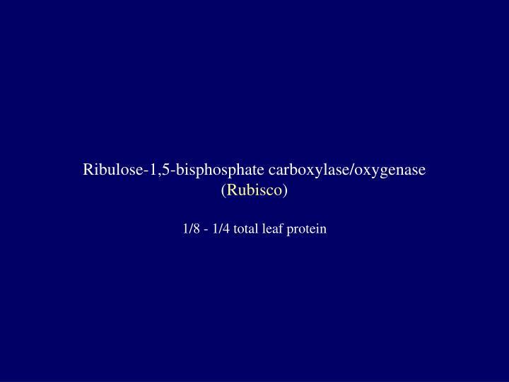 Ribulose-1,5-bisphosphate carboxylase/oxygenase
