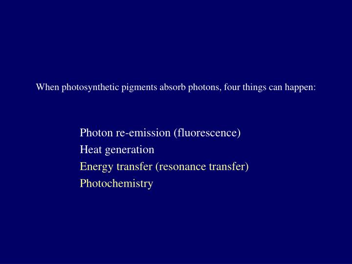 When photosynthetic pigments absorb photons, four things can happen: