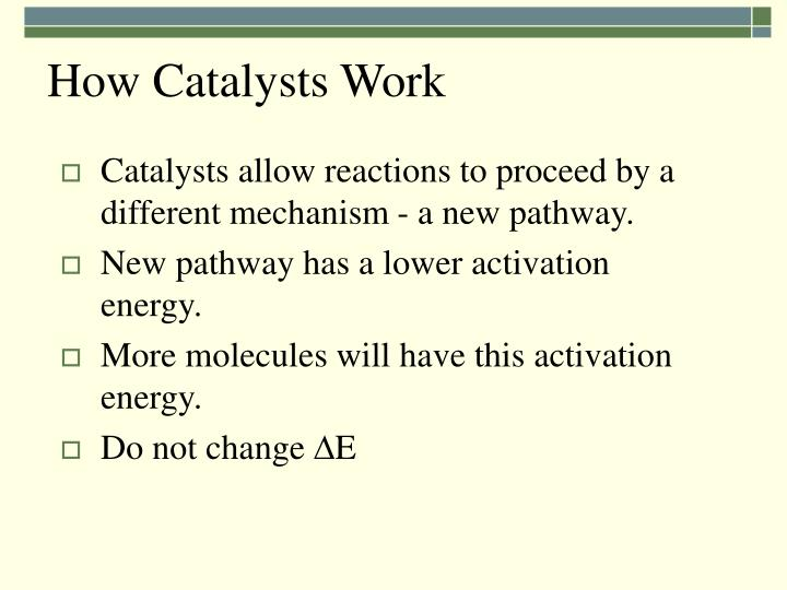 How Catalysts Work