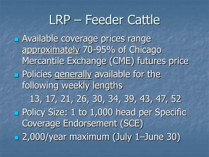 LRP – Feeder Cattle