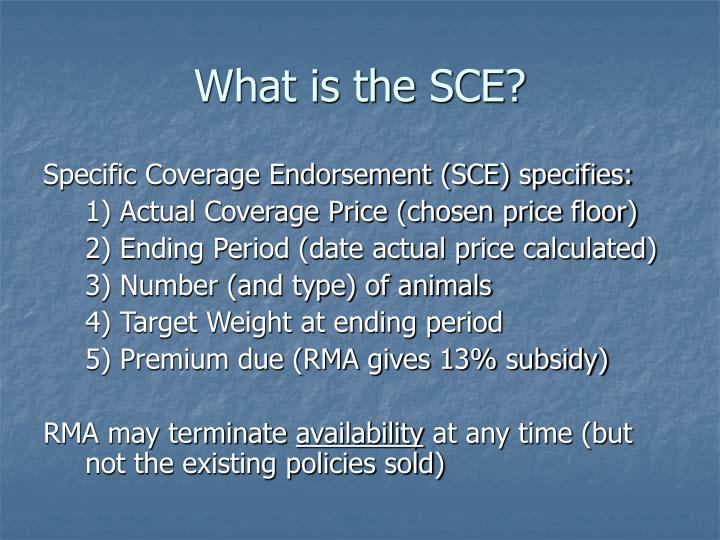 What is the SCE?