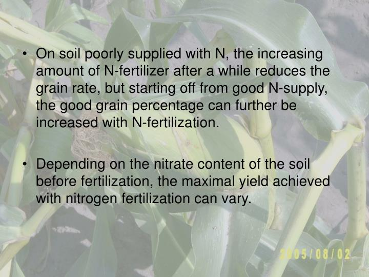 On soil poorly supplied with N, the increasing amount of N-fertilizer after a while reduces the grain rate, but starting off from good N-supply, the good grain percentage can further be increased with N-fertilization.