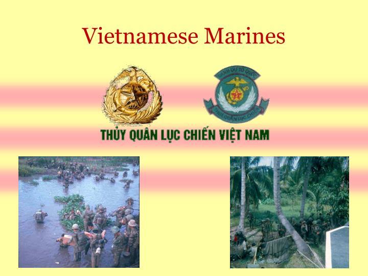 Vietnamese Marines