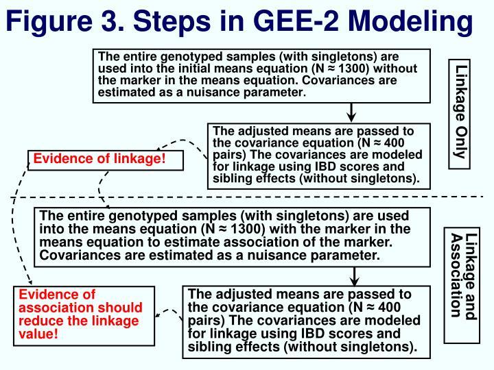 Figure 3. Steps in GEE-2 Modeling
