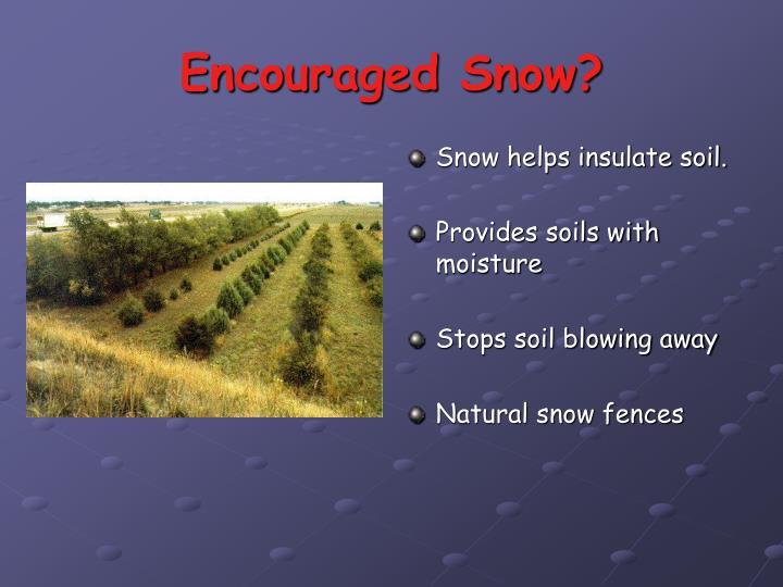 Encouraged Snow?