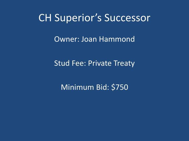 CH Superior's Successor