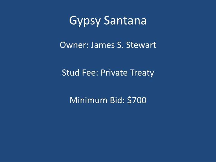Gypsy Santana