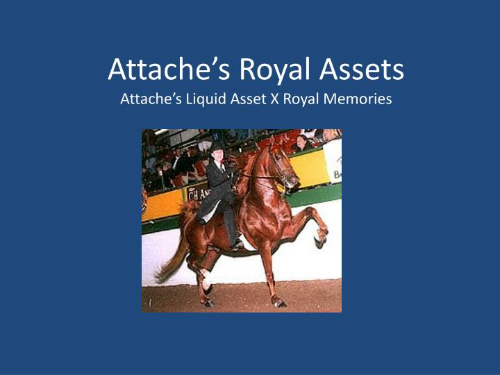 Attache's Royal Assets
