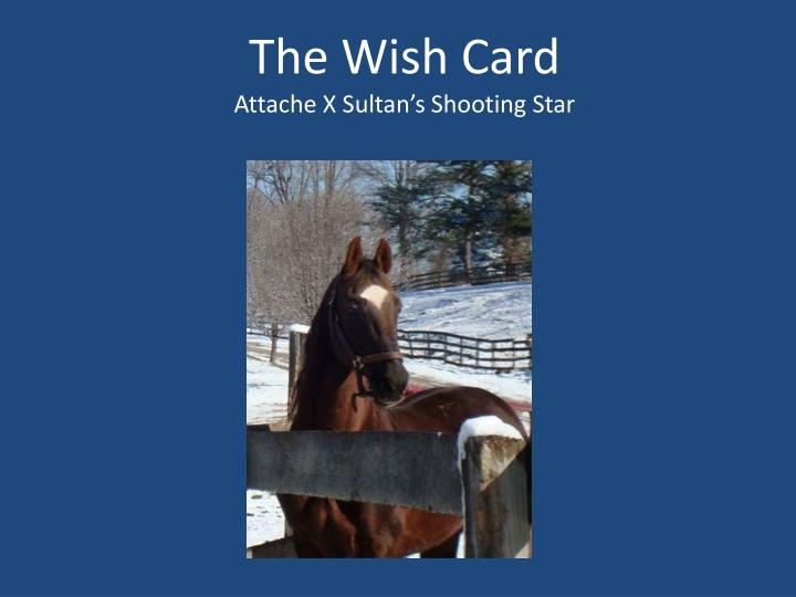 The Wish Card
