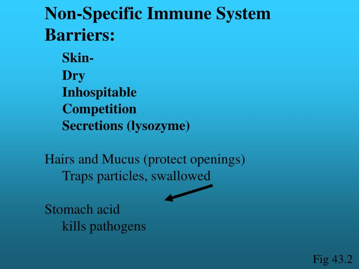 Non-Specific Immune System