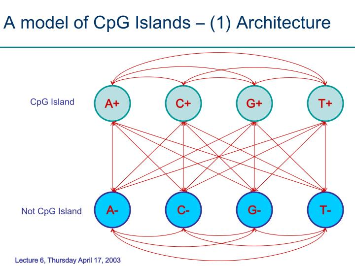 A model of CpG Islands – (1) Architecture