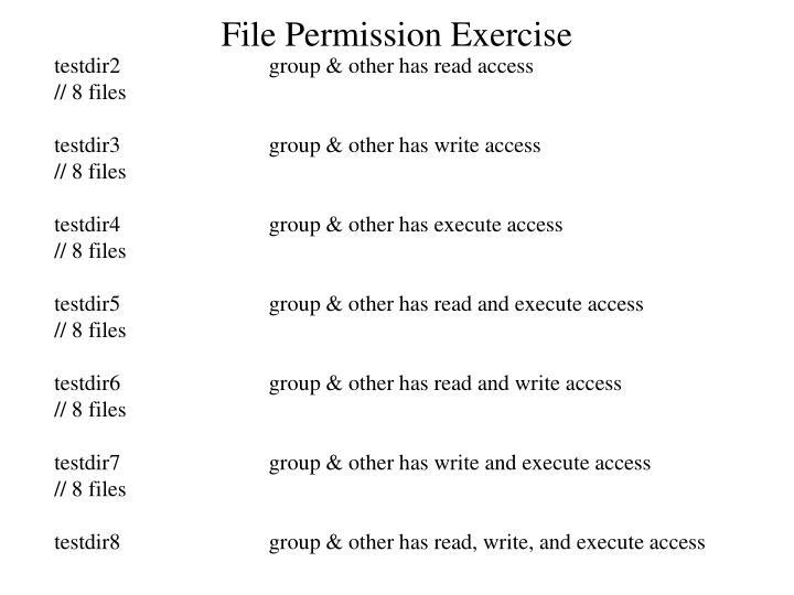 File Permission Exercise