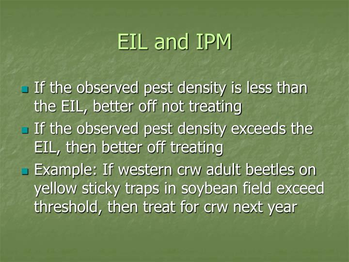 EIL and IPM
