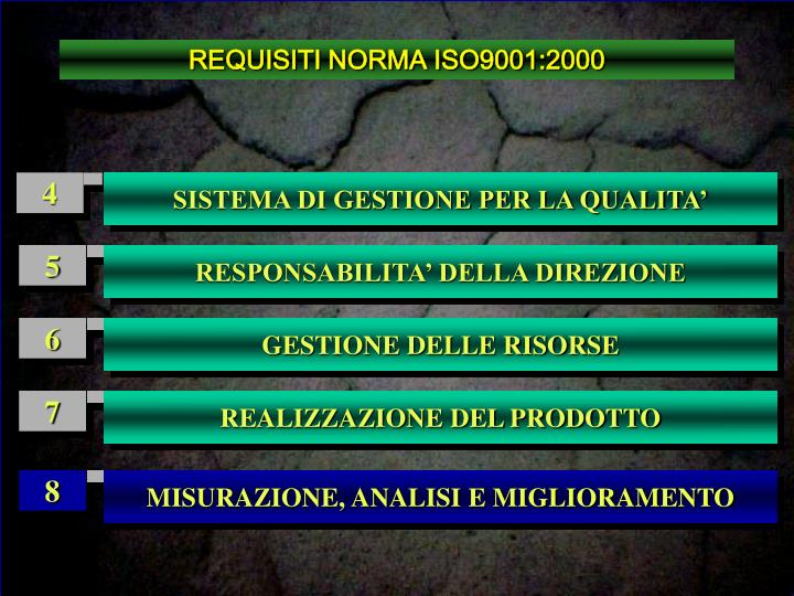 REQUISITI NORMA ISO9001:2000