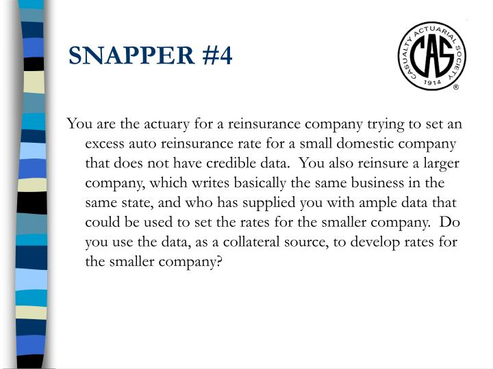SNAPPER #4
