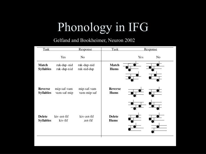 Phonology in IFG