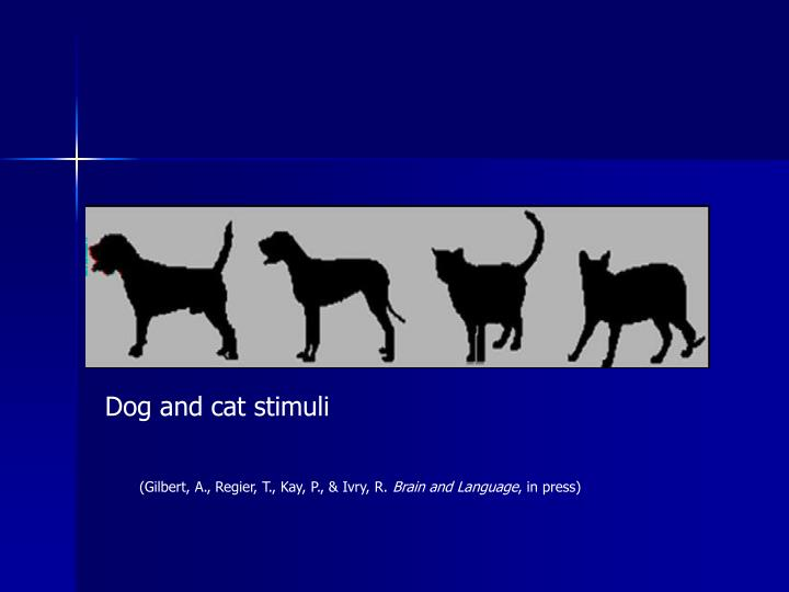 Dog and cat stimuli