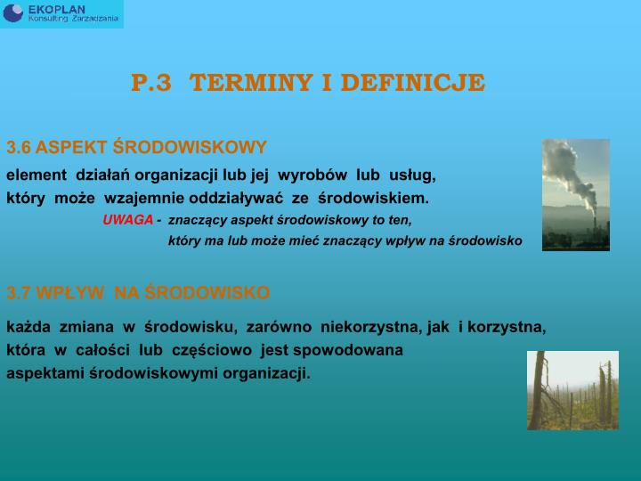 P.3  TERMINY I DEFINICJE